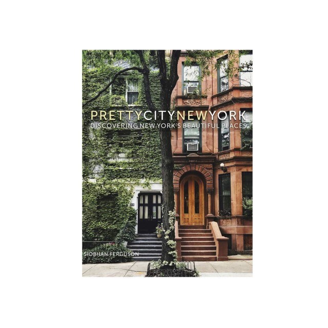 Pretty city new york book